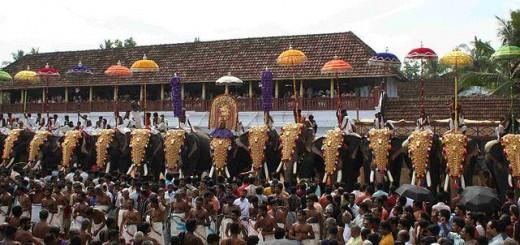 Thrisur Pooram 2013